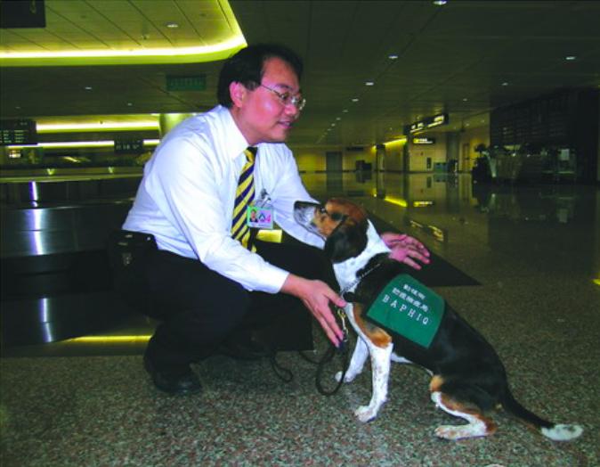 讓狗狗遵從領犬員的指令,培養默契需花費較長時間。圖:行政院農委會動植物防疫檢疫局/提供