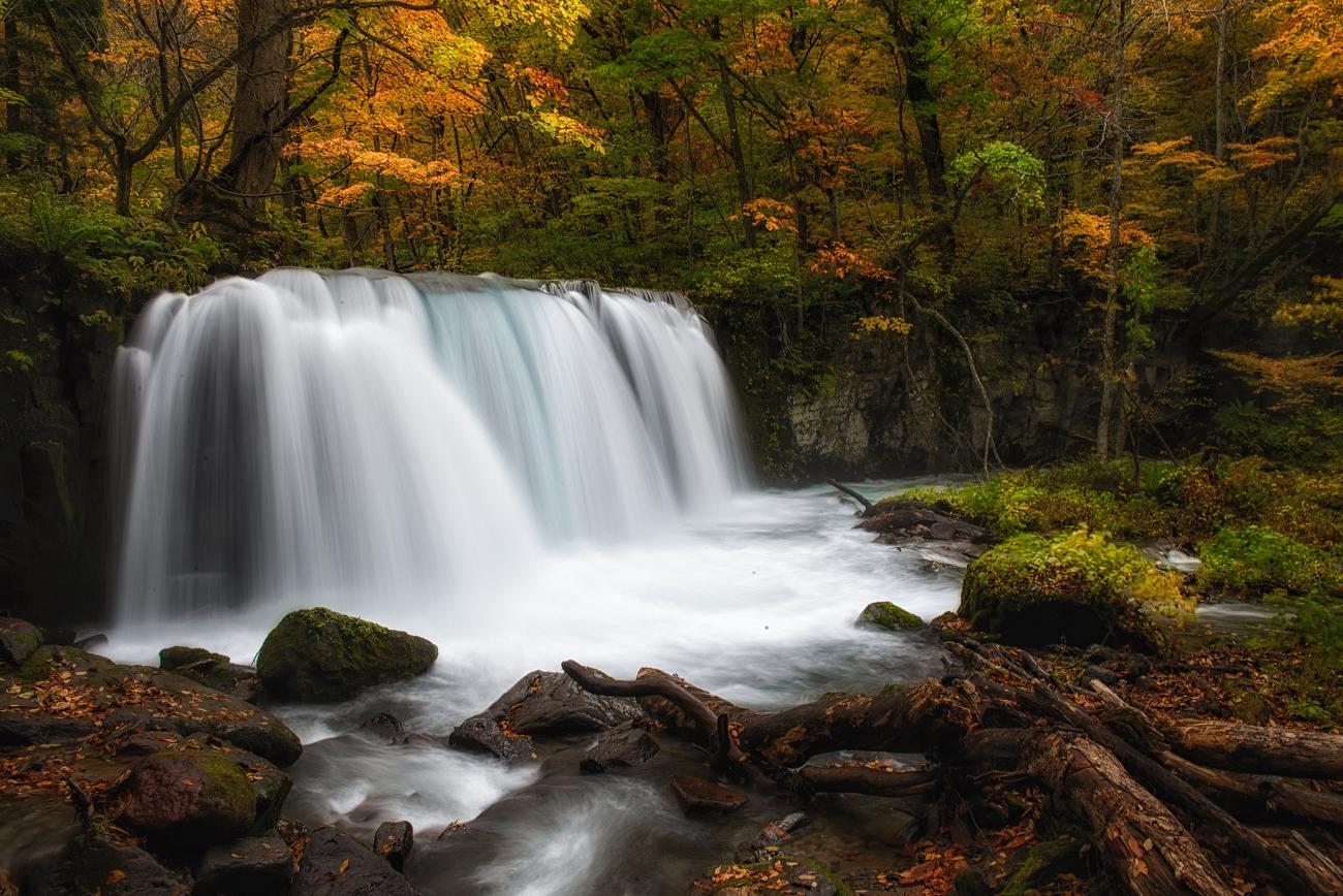 許多人選擇在銚子大瀑布作為奧入瀨溪流健行終點。圖:謝佳真/攝