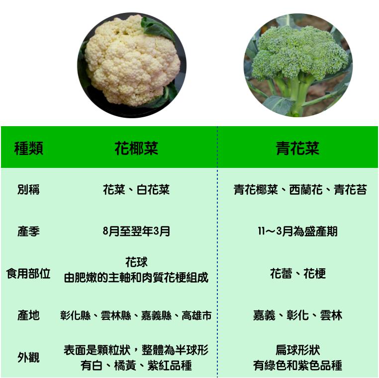 真的不一樣!花椰菜、青花菜比一比 圖:新頭殼/製表
