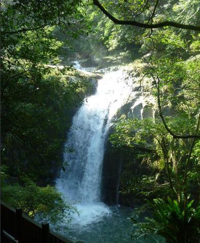 新竹的鴛鴦谷瀑布群步道挑戰難度比先前幾條略高,但不算難走。 圖:翻攝自新竹縣政府網站