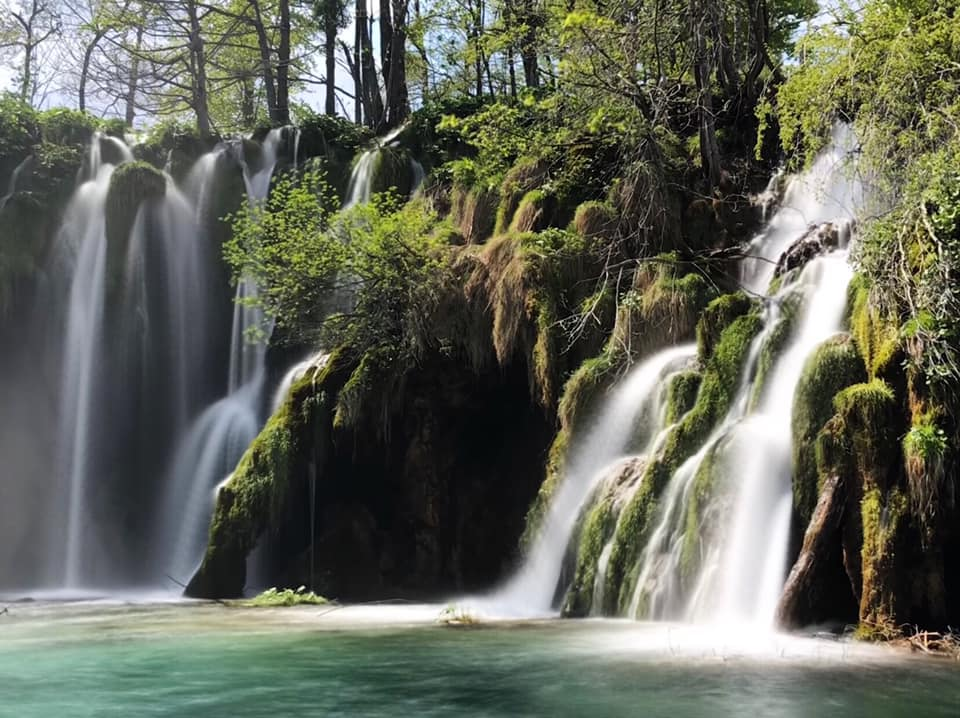 水中藻類、蘚苔植物與石灰岩交互作用,堆疊出國家公園內高低不等的地形。 圖:Candice/提供