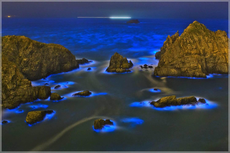 藍眼淚要在無光害的環境下拍攝才能取得最好效果。 圖:林夕陽/提供