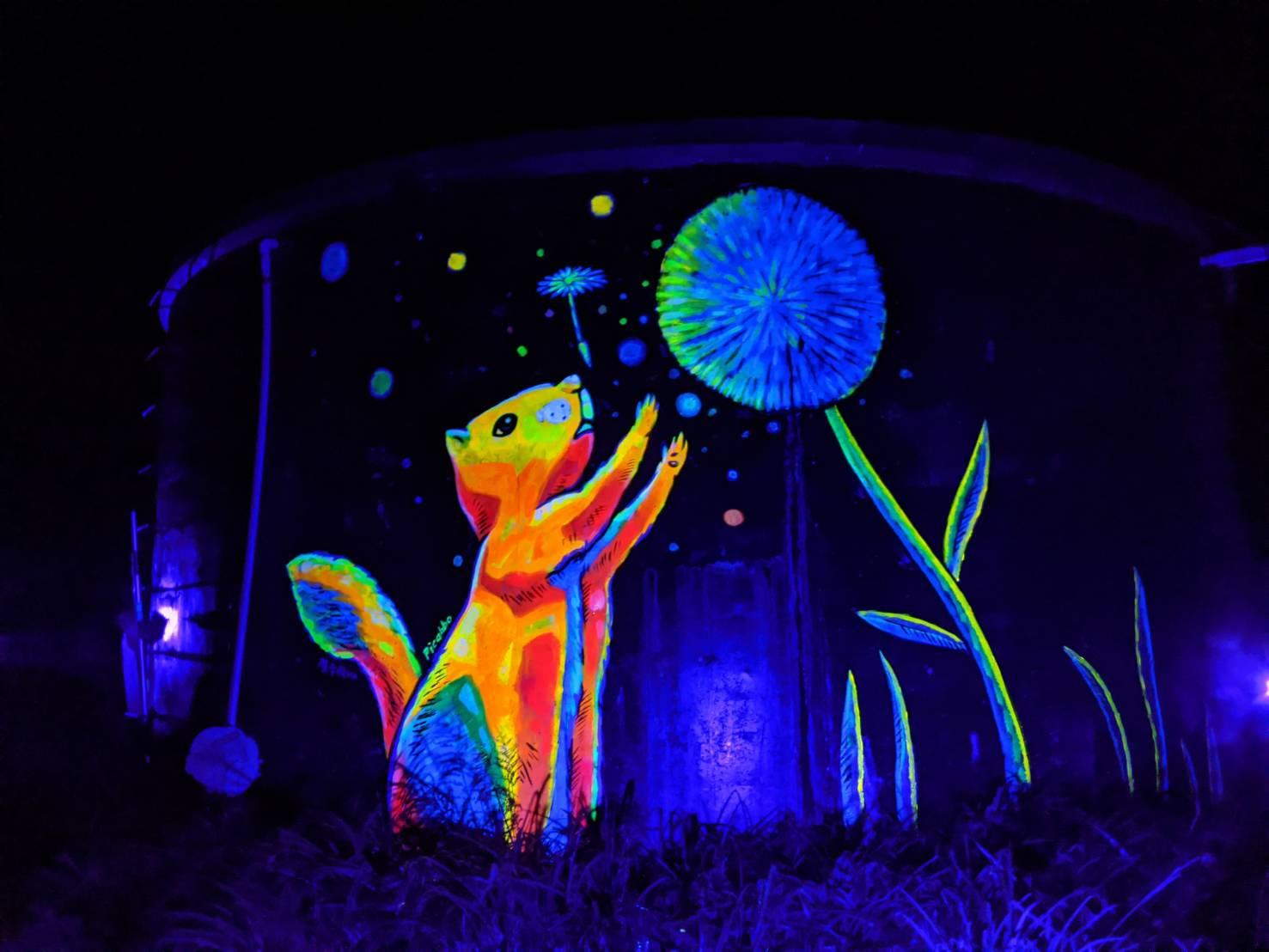 松鼠晚上化身螢光魔幻生物。 圖:花蓮縣府/提供
