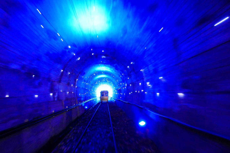 自即日起至9月底季節限定的「深澳鐵道自行車」燈光花海隧道。圖:新北市政府觀光旅遊局/提供