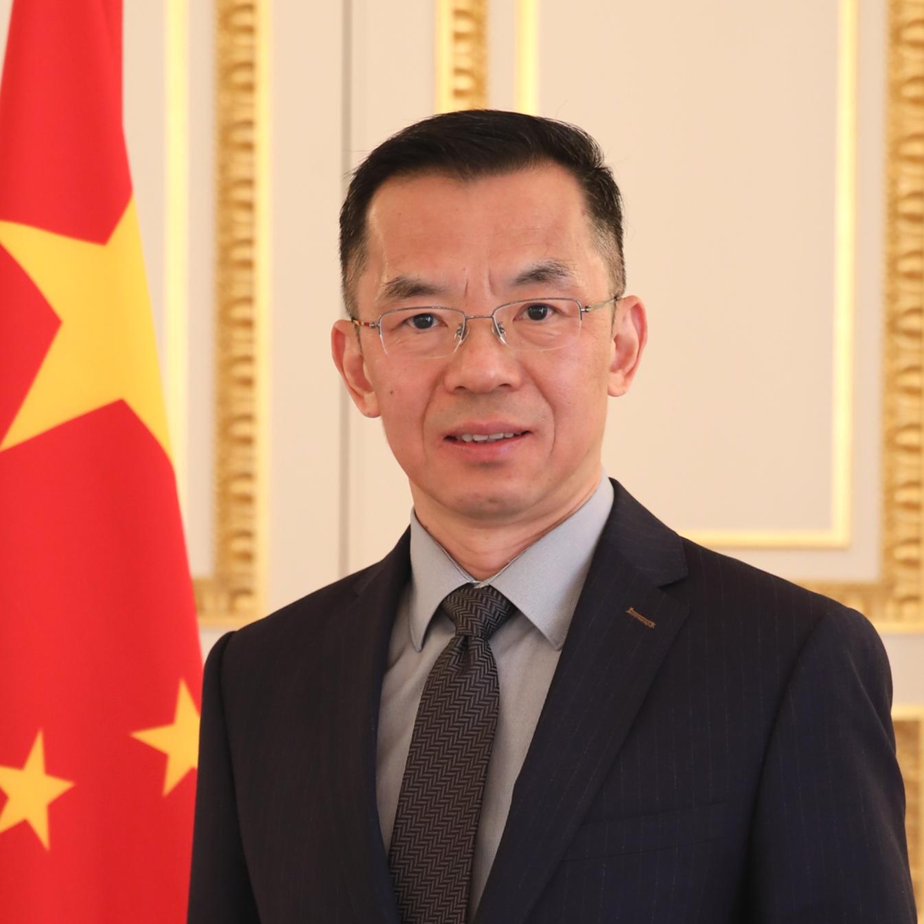 中國駐法大使盧沙野。 圖:翻攝中國外交部駐法官網