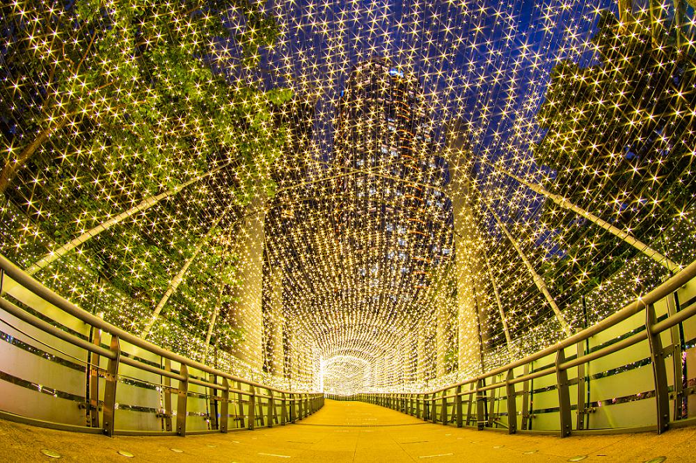 新北耶誕城不僅有燈飾布置,還舉辦了一系列的動態活動,持續到明年元旦。 圖:新北市政府/提供