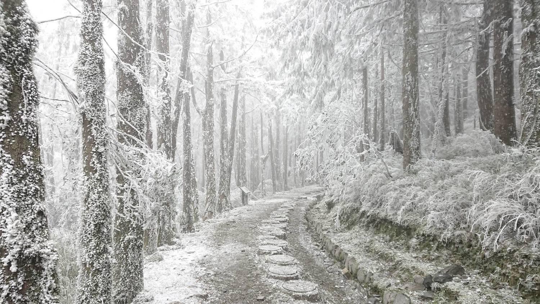 連兩波冷空氣接力!山區有望降雪 氣象局:北台溼冷到下週