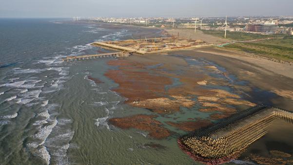 救藻礁!環團要求遷離天然氣接站  中油:不影響生態
