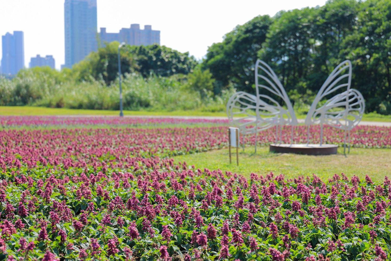 古亭河濱花海蝶翼造型的不鏽鋼裝置藝術打造拍照點。圖:取自台北市政府全球資訊網